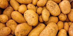 Par peur d'une pénurie il commande 30 tonnes de pommes de terre